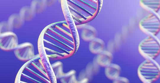 INNOVATIVO TEST SUL DNA